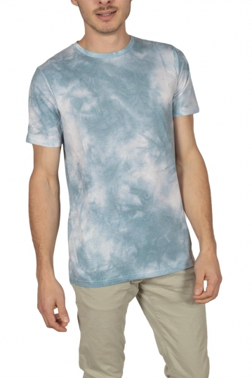 Globe Forester men's t-shirt washed bermuda