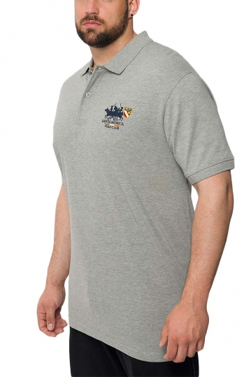 Men's polo shirt grey melange Insane plus